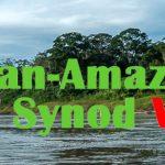 Sinodo Panamazzonico – gli ultimi aggiornamenti